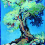 olijfboom samos